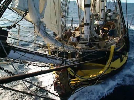 Documentaire – Thalassa : L'expédition Lapérouse